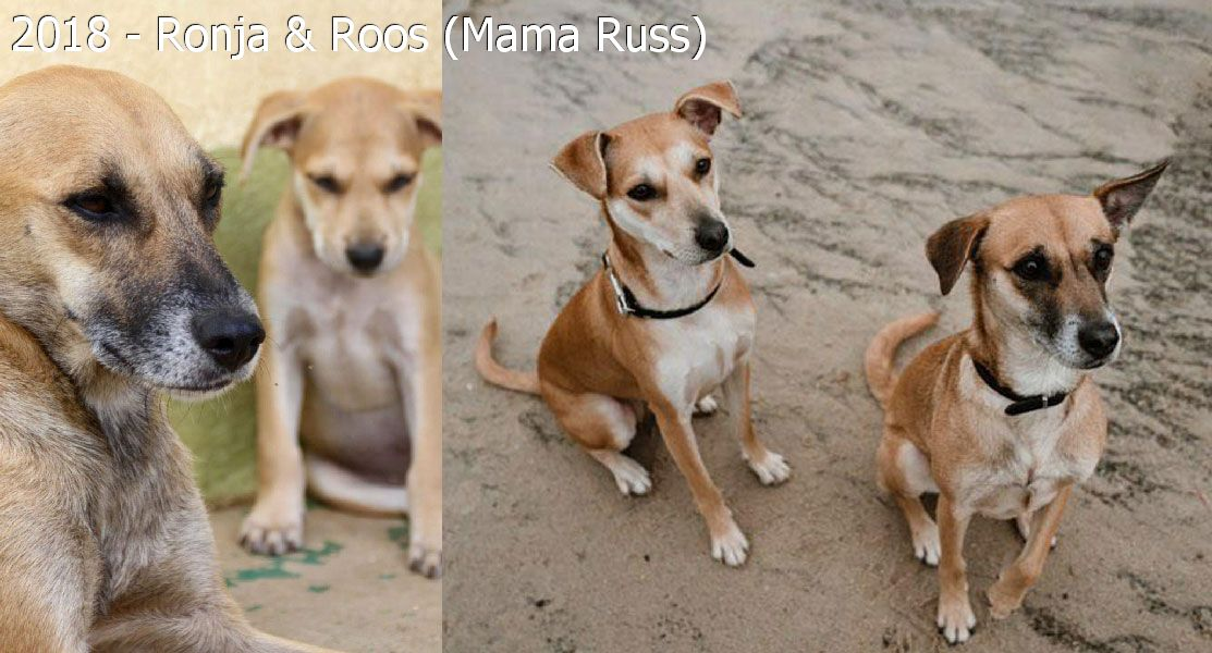 2018 – Ronja & Roos (Mama Russ)